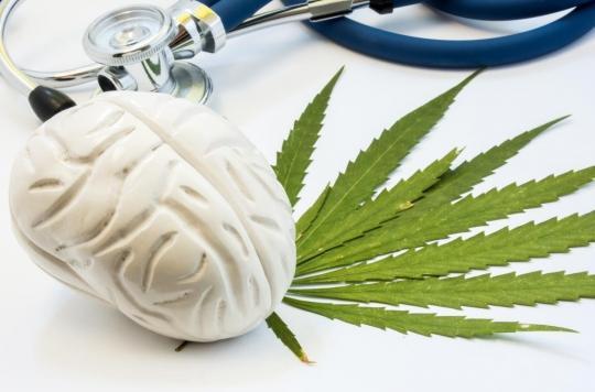 Stress, anxiété: notre cerveau sécrète une molécule aux mêmes effets que le cannabis