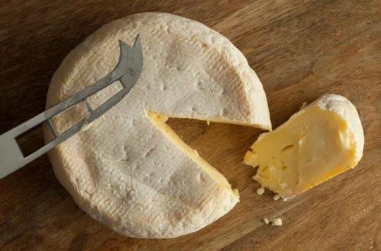 Tous les reblochons de la fromagerie Chabert rappelés après une contamination à la E-Coli