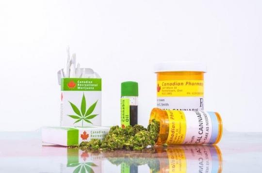 Cannabis médical : une nouvelle « mousse » plus efficace que le THC