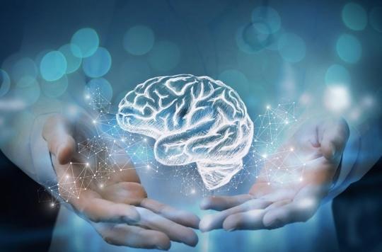 Cerveau : et si nous pouvions effacer nos regrets ?