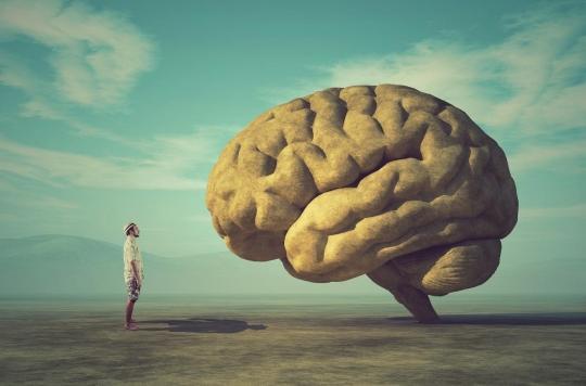 Changer la structure de son cerveau en une heure, c'est possible