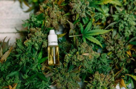 Cannabis : le Colorado évalue l'impact de la légalisation sur la santé