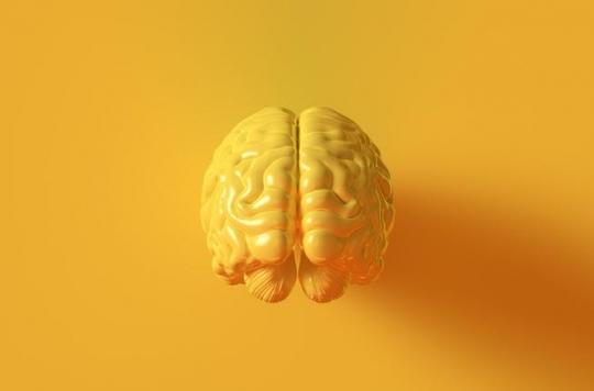 Epilepsie, Parkinson : un nouvel implant cérébral s'annonce révolutionnaire