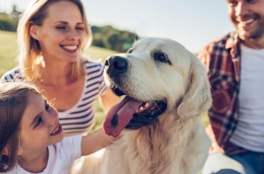 Vous avez un chien ? C'était écrit dans vos gènes !