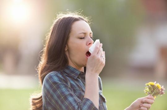 Pollens : attention, le beau temps réveille les allergies