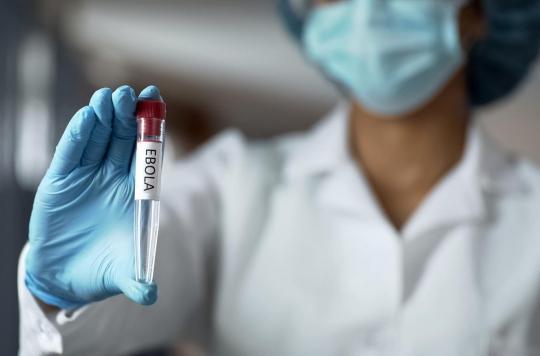 Ebola : un appareil pour détecter le virus en cinq minutes seulement