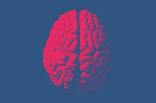 Alzheimer : certains cerveaux s'en protègent moins bien que d'autres