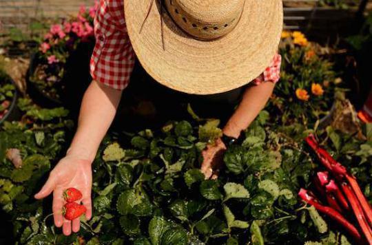 Santé mentale : jardiner améliore l'estime de soi