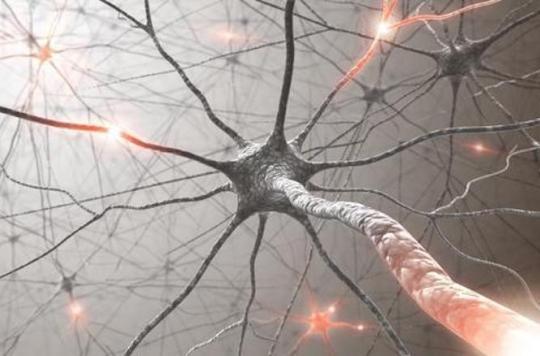 Autisme : une anomalie génétique pourrait constituer une cible thérapeutique