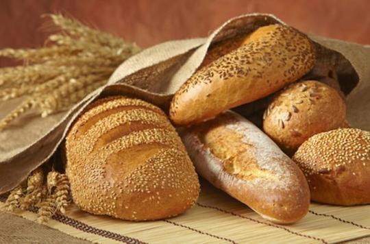 Métabolisme : le pain complet ne fait pas mieux que le pain blanc