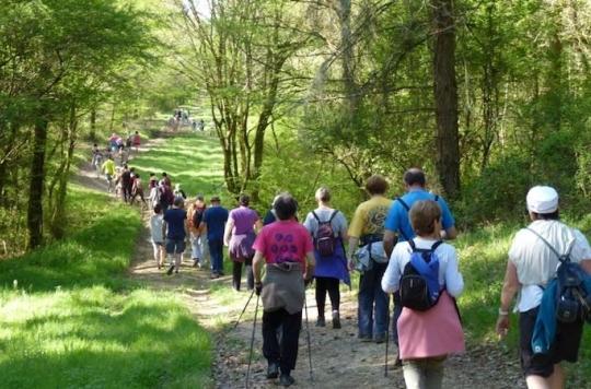Parcours du Coeur : les Français ont fait un million de kilomètres