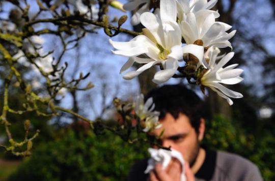 La piste de probiotiques pour soulager la rhinite allergique