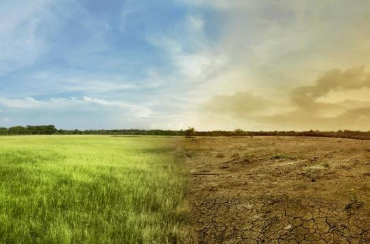 Le réchauffement climatique accélèrera la survenue des cancers