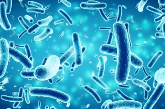 La pollution fécale humaine serait à l'origine de la résistance bactérienne