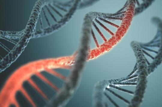 Sclérose en plaques : la principale mutation génétique identifiée
