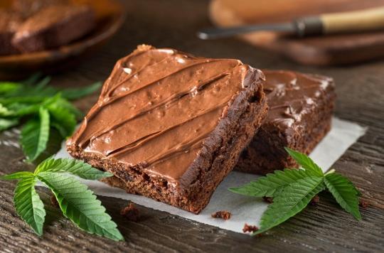 Cannabis réglementé : les buralistes \