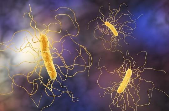 Super antibiotiques: une nouvelle molécule 1000 fois plus efficace