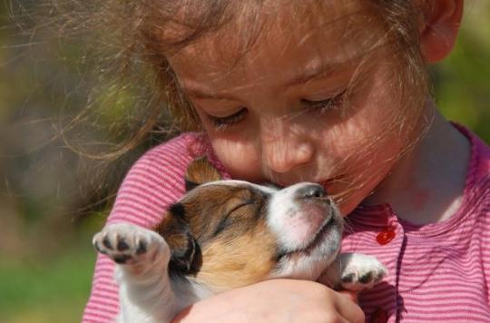 Stress: les chiens apaisent les enfants