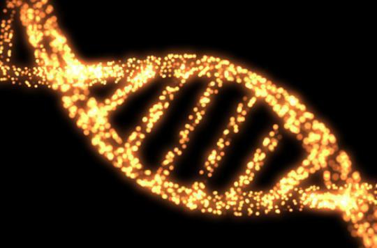 Intelligence artificielle : Watson détecte un cancer rare