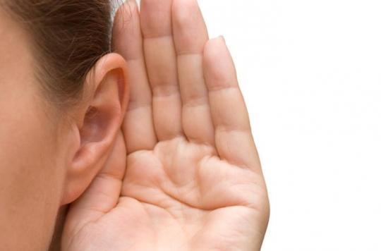 Greffe d'oreille en Chine : une pratique qui se développe