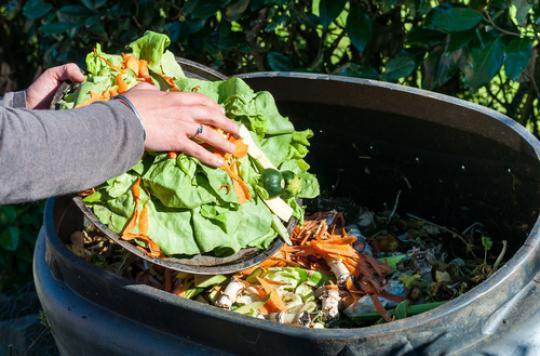 Gaspillage alimentaire : plusieurs facteurs psychologiques en cause