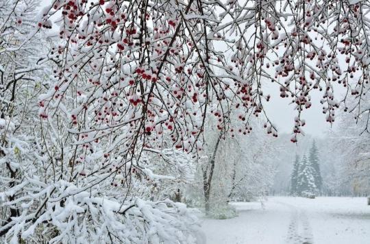 Eviter les virus et les infections de l'hiver en 7 points