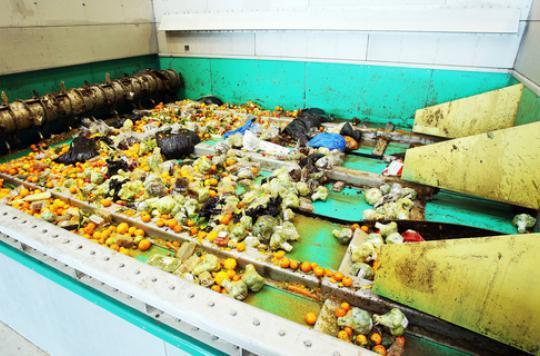 Gaspillage alimentaire : des mesures simples pour réduire la facture