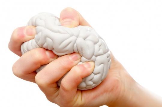 Cartographier le circuit neuronal pour déterminer la réponse physique au stress
