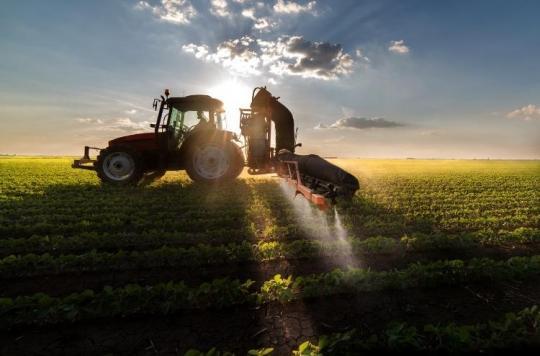 Pesticides: dangers des fongicides SDHI retrouvés dans l'alimentation