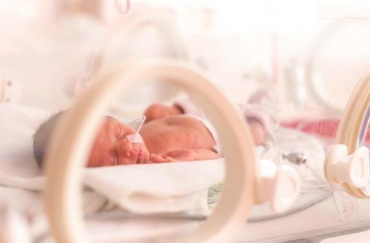 Bébés prématurés : le système immunitaire peut rattraper son retard