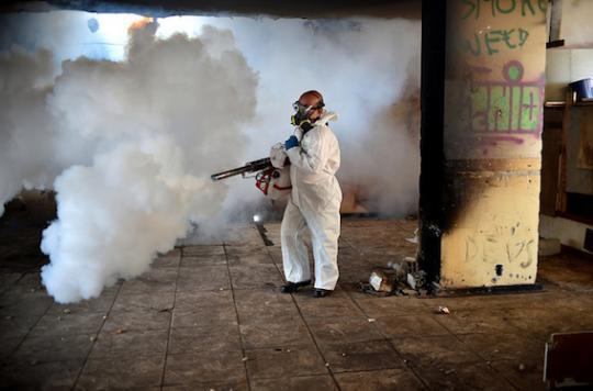 Zika : l'épidémie s'essouffle au Brésil