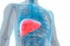 Cancer du foie : un diagnostic souvent trop tardif