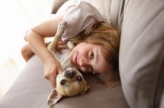 Giardiase : une parasitose intestinale fréquente, transmise par le chien